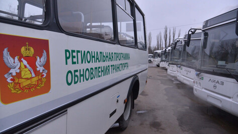 «Большое подспорье». Воронежская область получила 51 новый автобус