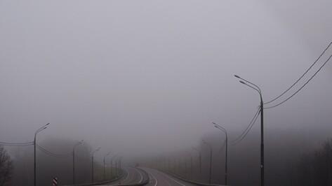 Ночью Воронежскую область окутает сильный туман
