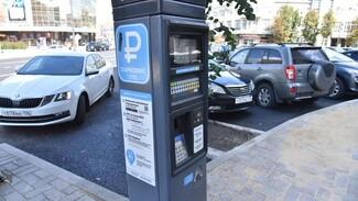 Платные парковки в Воронеже будут окупаться дольше запланированного