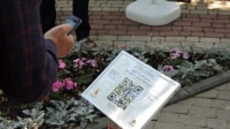Воронежские памятники культуры расскажут о себе с помощью QR-кодов