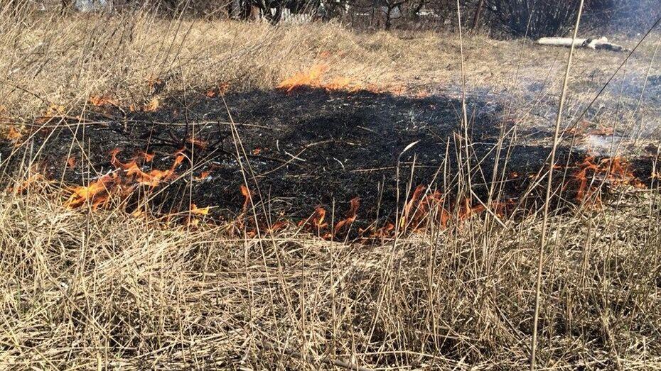 В Кантемировском районе начались ландшафтные пожары
