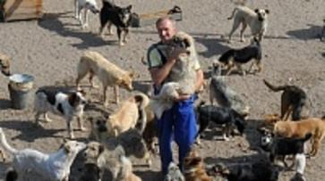 Воронежский зоозащитник и его слепой щенок пройдут 500 км ради бездомных собак