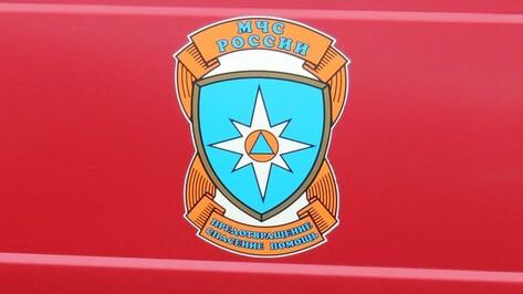 Спасатели Крыма поучатся у воронежских коллег
