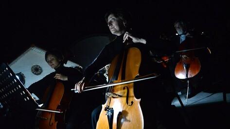 В воронежском Центральном парке пройдет фестиваль «Ночь города»