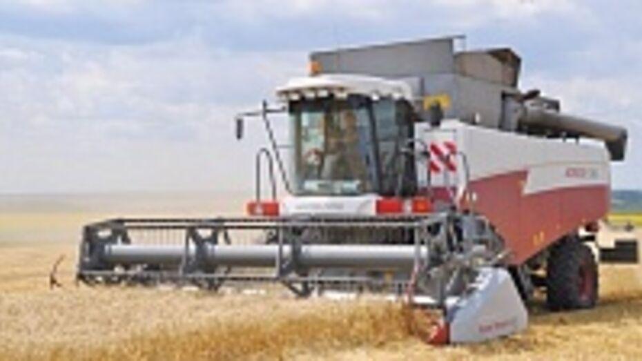 Аграрии Воронежской области получат компенсации из федерального бюджета на сумму более 340 млн рублей