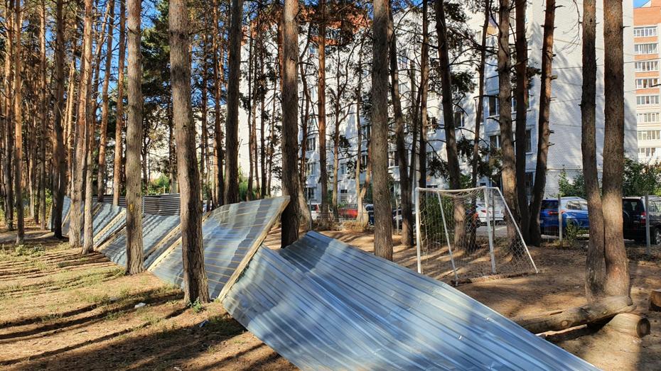 Стало известно о состоянии раненого в Северном лесу Воронежа