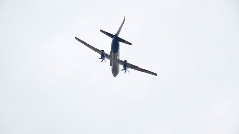 Авиакомпания Uzbekistan Airways отменила рейсы в Воронеж из-за пандемии коронавируса