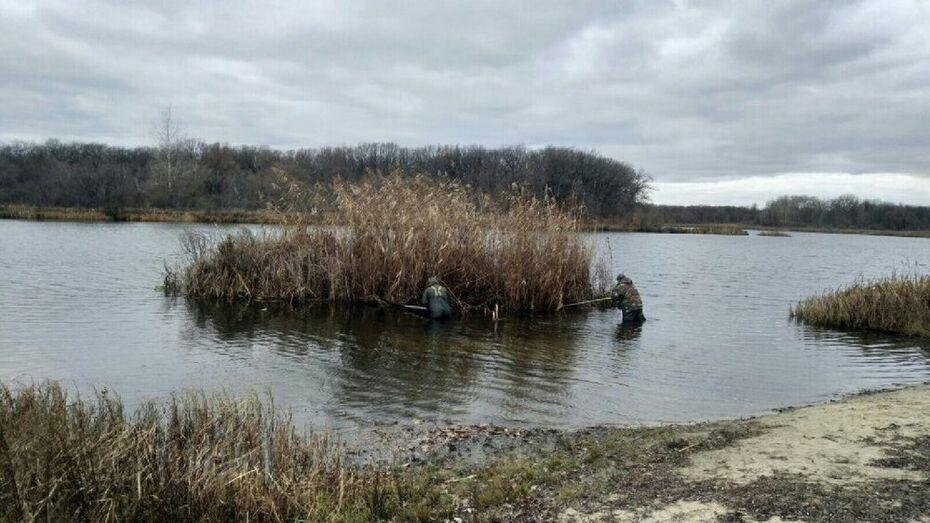 Большой плавучий остров отбуксировали к берегу в Воронежской области