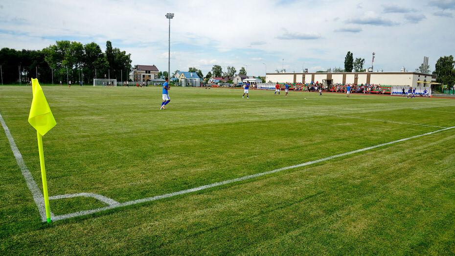 Футбольное поле воронежского «Локомотива» станет подогреваемым