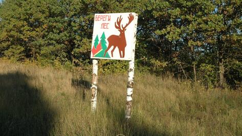 МегаФон организовал противопожарное наблюдение за лесами Воронежской области