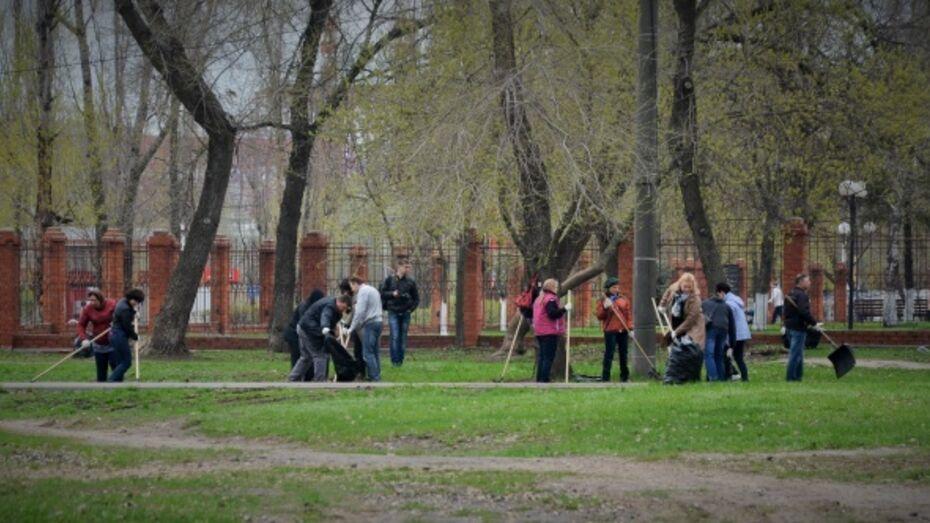 В Воронежской области на субботник вышли 173,5 тыс жителей