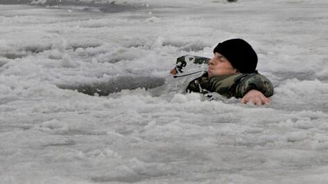 Спасатели рассказали воронежцам, что провалиться можно и под 30-сантиметровый лед