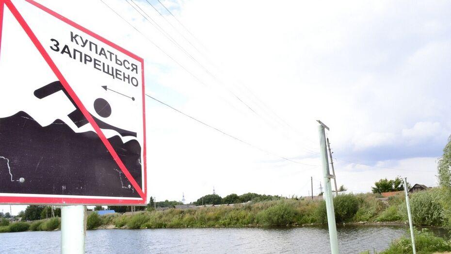 В Грибановском районе запретили купание на диком пляже