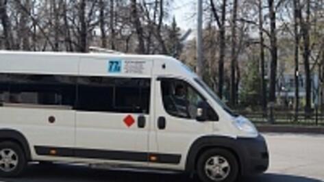 В Воронеже начались массовые проверки маршруточников