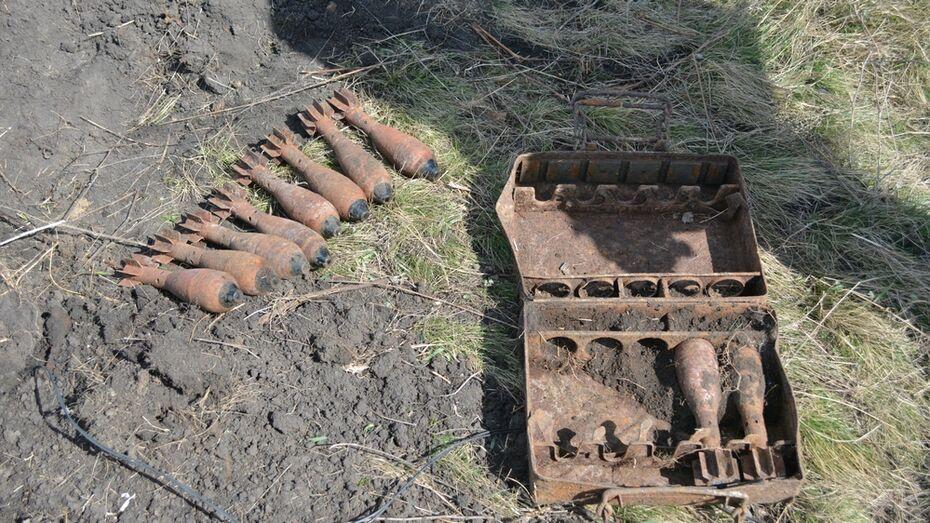 В острогожском селе нашли 97 боеприпасов времен ВОВ