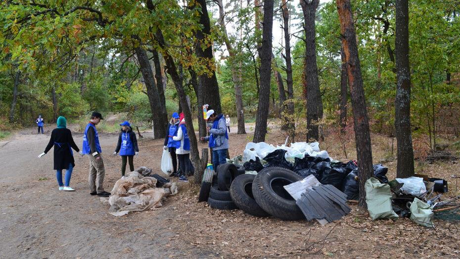 Экоквест «Чистые Игры» пройдет в Воронеже 19 сентября
