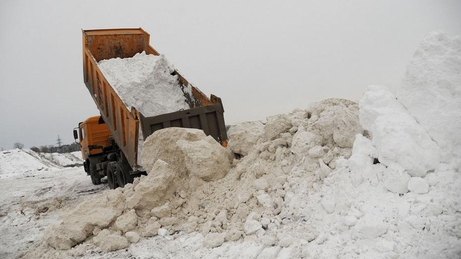 Как это работает: снежные полигоны Воронежа