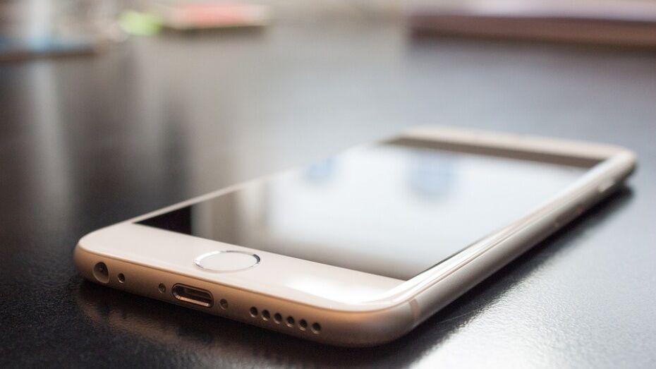 В Борисоглебске 20-летняя девушка получила 2,5 года условно за кражу сотового телефону