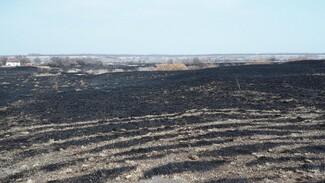 В Бутурлиновском районе за 6 дней произошло 75 ландшафтных пожаров