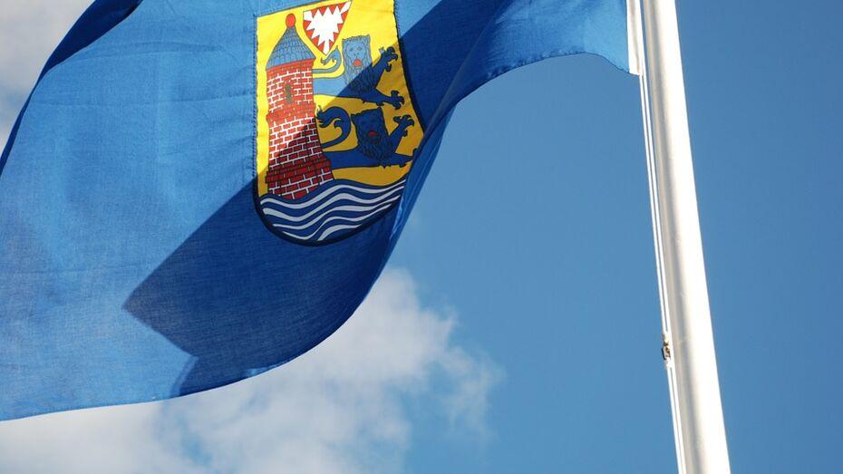 Воронежская область запланировала сотрудничество с немецкой землей Шлезвиг-Гольштейн