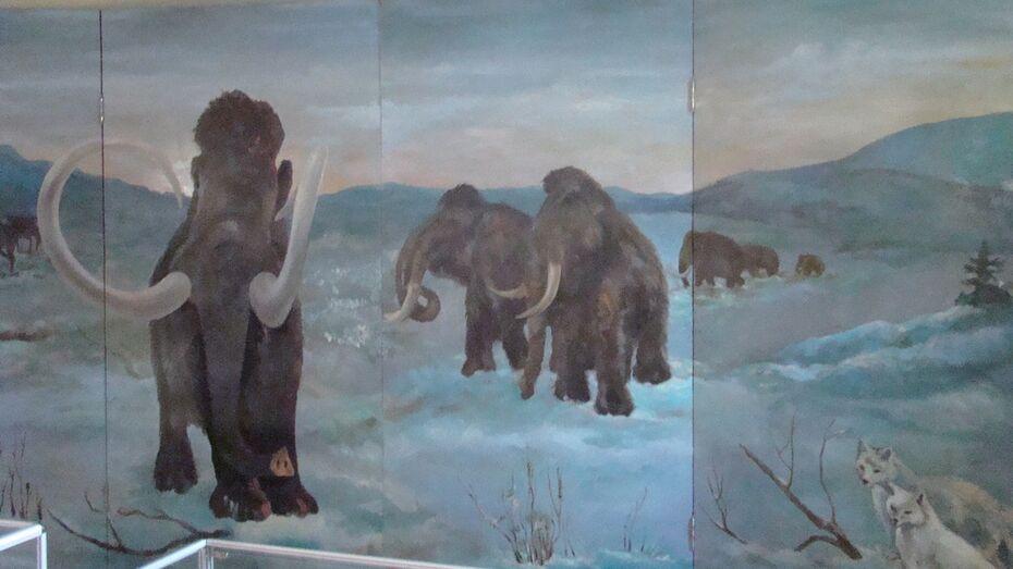 Сотрудники музея «Костенки» провели мастер-класс по живописи каменного века
