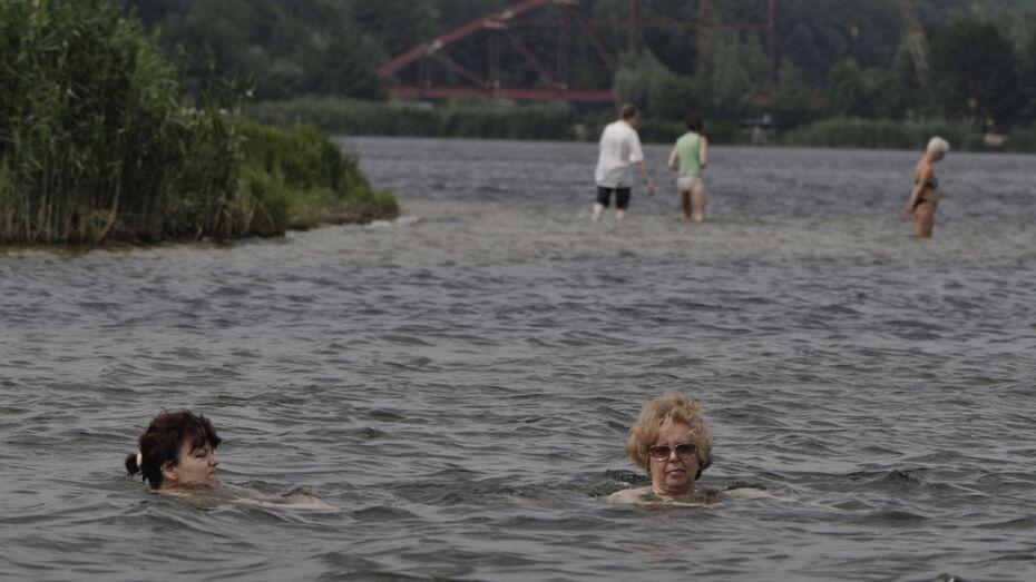 Роспотребнадзор признал безопасными 6 воронежских пляжей