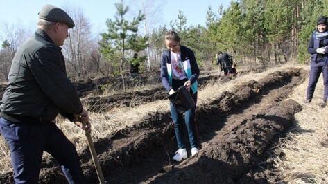 В Воронеже объявили даты проведения акции «Сад памяти»