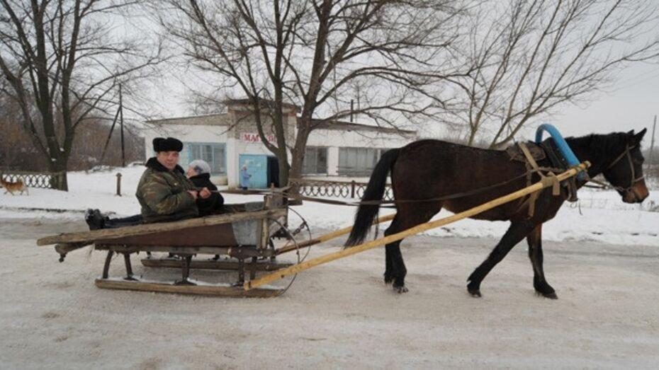 Только треть жителей Воронежской области пользуется Интернетом