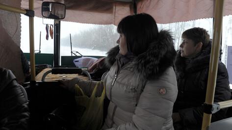 Лишь 40% перевозчиков Воронежской области получили обязательные лицензии