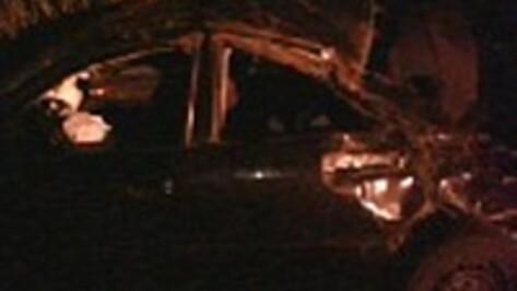 В Воронежской области при опрокидывании Audi пострадали трое мужчин