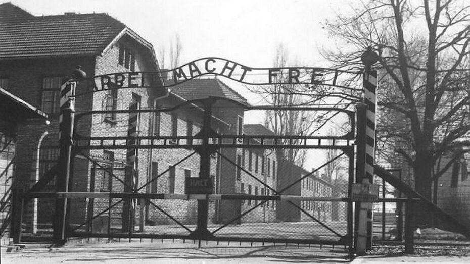 Воронежцы увидят исторические фотографии из концлагерей Аушвиц и Фалстад