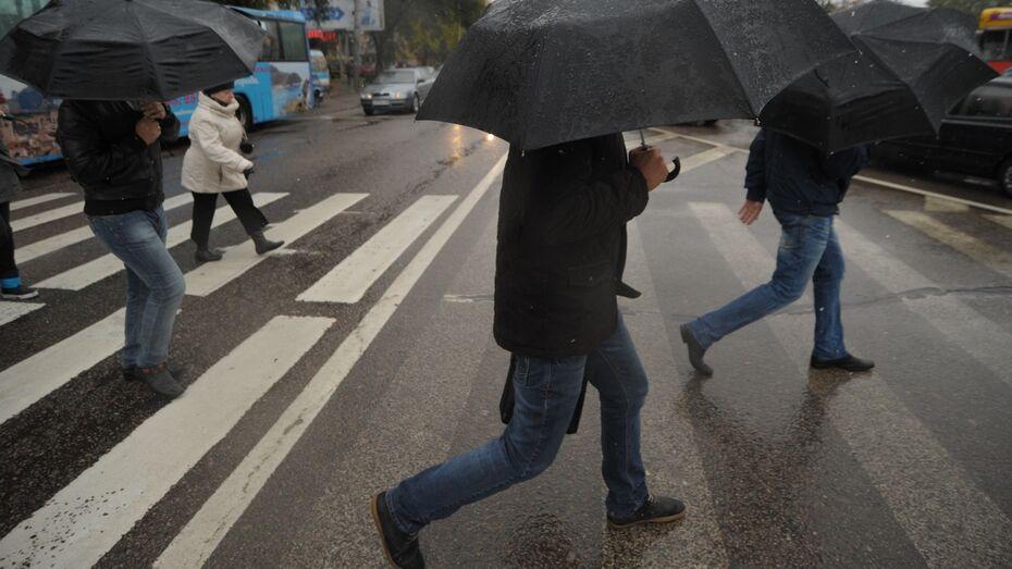 Погода в Воронеже побила 38-летний температурный рекорд