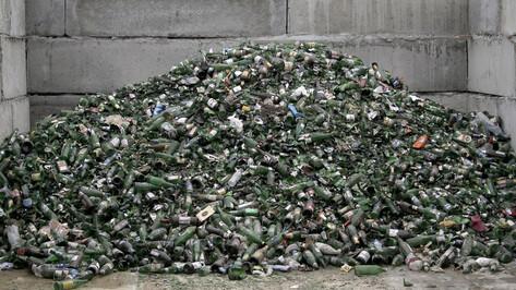 Эксперты обозначили сложности в проведении мусорной реформы в Воронежской области