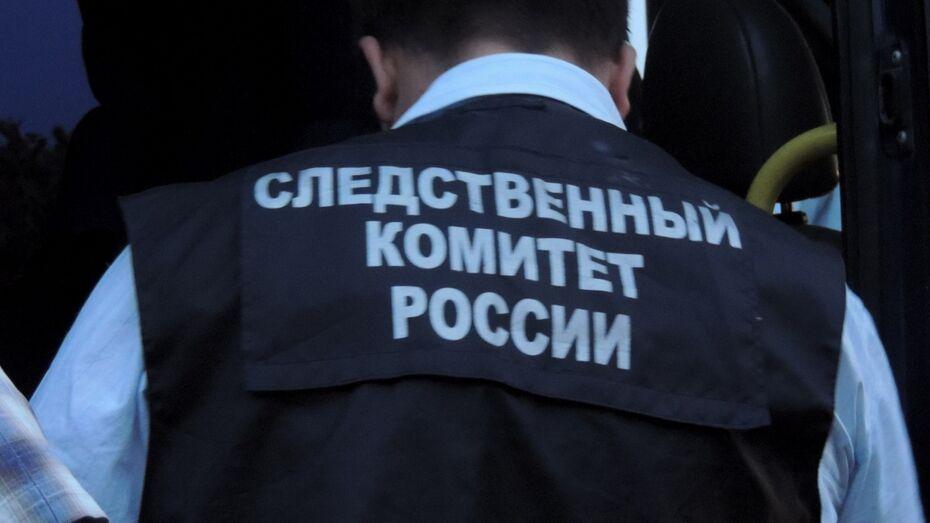 В Воронежской области глава района попал под следствие за превышение полномочий
