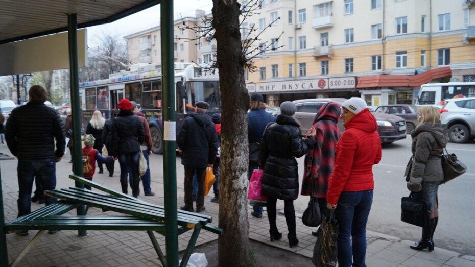 Воронежец отправится в колонию на 4 года за сексуальное насилие над попутчицей