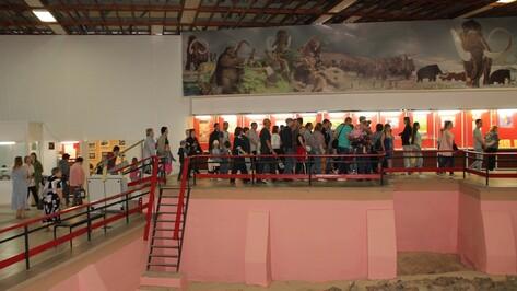 Хохольский музей-заповедник «Костенки» посетило рекордное число человек в 2019 году