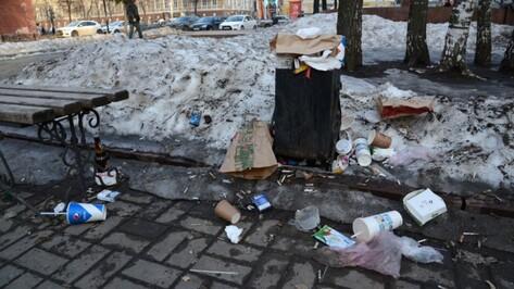 Глава Воронежа поручил чаще убирать мусор в местах массовых гуляний
