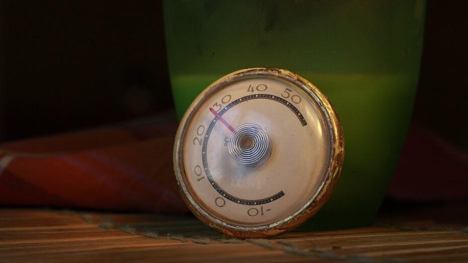Выходные в Воронеже будут жаркими