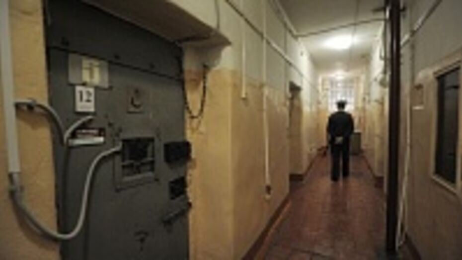 В Воронежской области от наказаний освободили 118 человек в связи с амнистией
