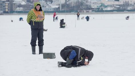 Перед рыбой – на колени. В Воронеже прошли соревнования Кубка области по ловле на мормышку