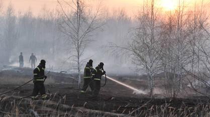 Горячий вторник. Спасатели остановили огонь на окраине Воронежа