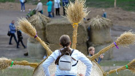 Воронежцы увидят животных из каменных валунов на фестивале «Город-сад» в 2019 году