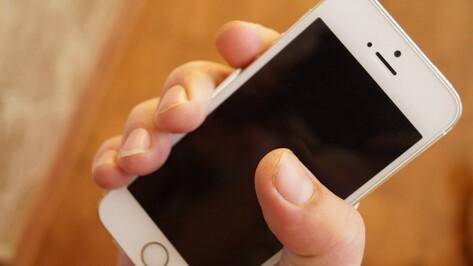 В Воронежской области запустили первое мобильное приложение в сфере ЖКХ