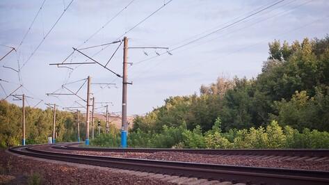 В Воронеже введут три электрички для дачников