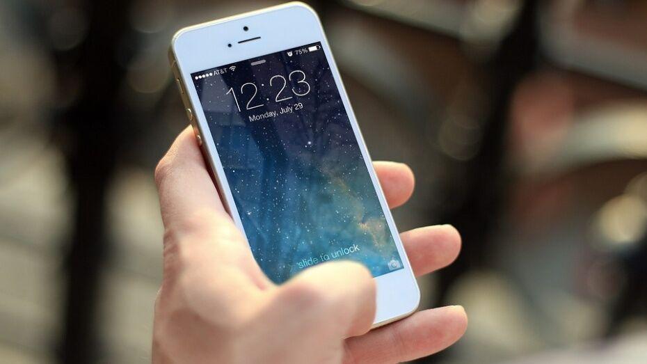 В Лискинском районе подросток украл телефон стоимостью 15 тыс рублей