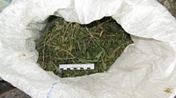 Острогожский пенсионер-наркоторговец попал под следствие