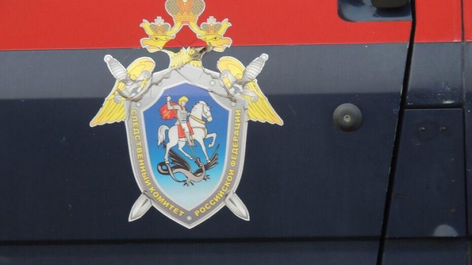 Следователи проверят причину гибели полицейского в ДТП в Воронежской области