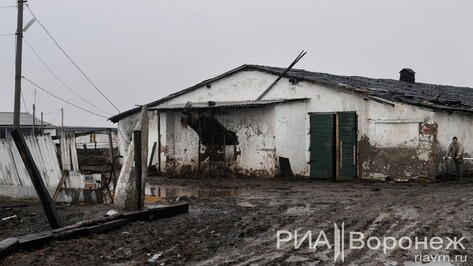 В Воронежской области фермера, который побоями принуждал людей к рабскому труду, освободили в зале суда