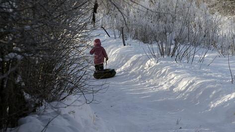 Мороз и солнце порадуют воронежцев в выходные