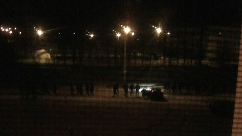 Очевидцы: около 80 человек устроили драку у школы в Воронеже